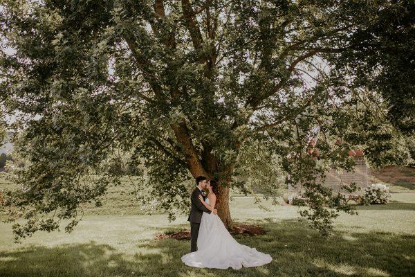 wedding tree kiss