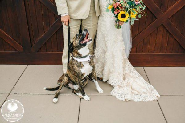stoltzfus_homestead_wedding_inspiration_054-946x631