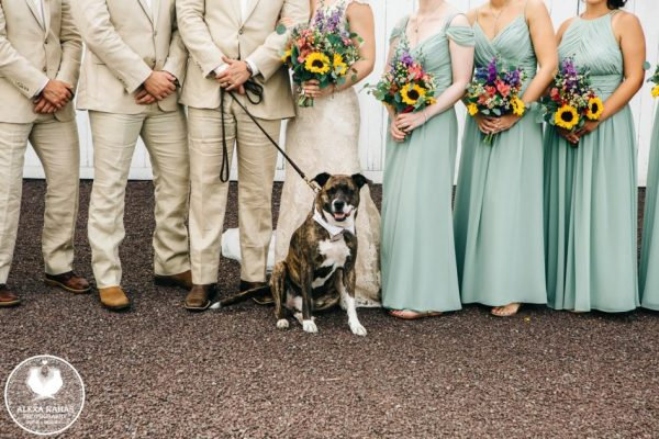 stoltzfus_homestead_wedding_inspiration_056-946x631